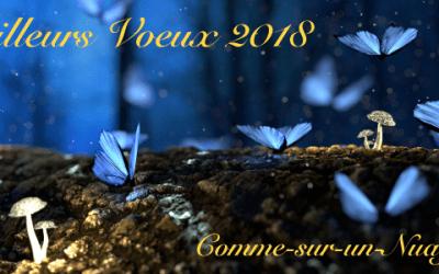 Très belle année et meilleurs voeux pour 2018